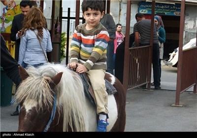 الحیاة فی دمشق مستمرة