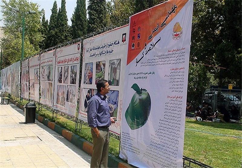 اشرف منصوری