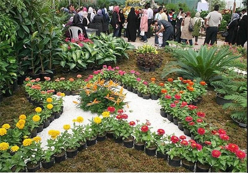 سرما 222 میلیارد تومان به گل و گیاه مازندران خسارت وارد کرد