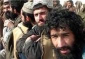 افغانیوں اور بنگالیوں کو شہریت دینے سے متعلق وزیرِاعظم کا بیان مسترد