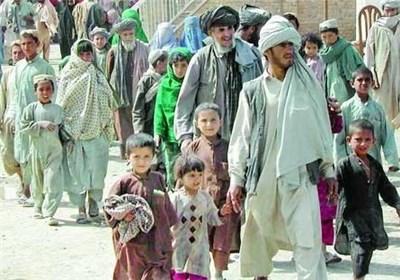 افغان اور بنگالی مہاجرین کو شہریت دینے کا فیصلہ نہیں کیا، عمران خان