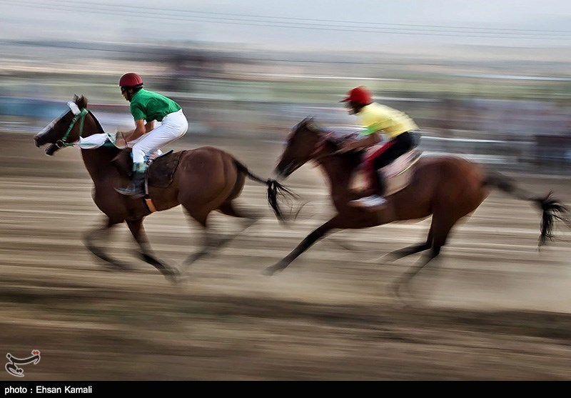 مسابقات کورس سوارکاری بجنورد - خراسان شمالی