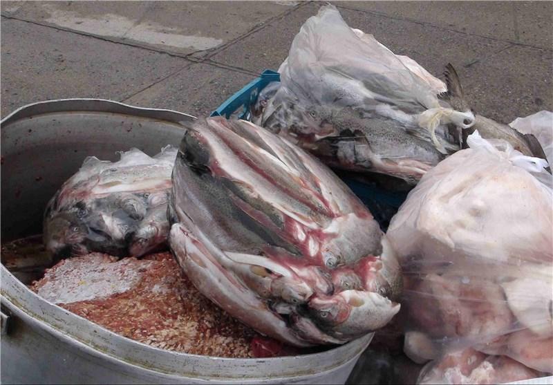کشف ۱.۵ تن موادغذایی و خوراکی فاسد در استان گلستان