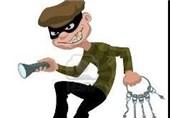دزد سارق