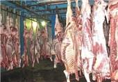 گوشت گوسفندی 41هزار تومان شد