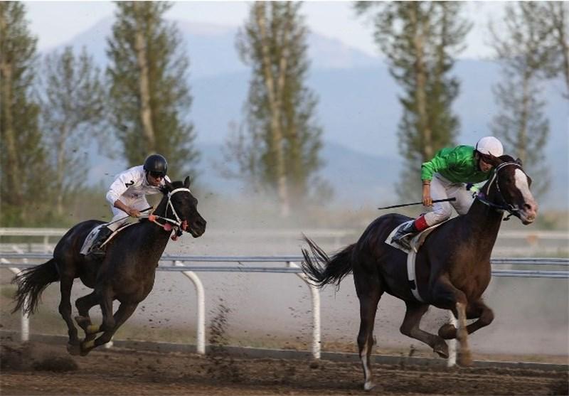 هفته هشتم مسابقات اسبدوانی کورس پائیزه در گنبدکاووس برگزار شد