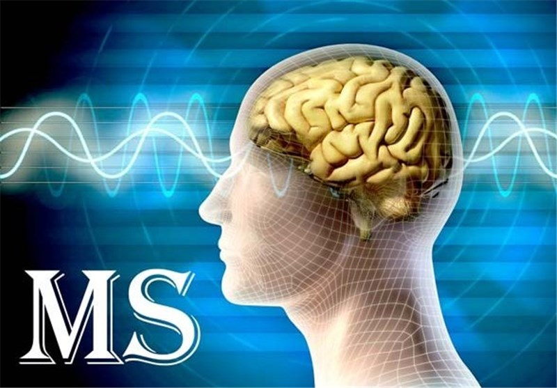 Immune-Disorder Treatment in Mice Holds Potential for Multiple Sclerosis Patients
