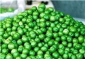 جزئیات قیمت میوه های فصل/ گوجه سبز 45 تا 85 هزار تومان