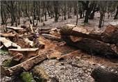 کهگیلویه و بویراحمد  خودروی حامل چوب درختان جنگلی در کهگیلویه توقیف شد