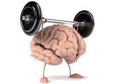 14 راهکار برای تقویت حافظه
