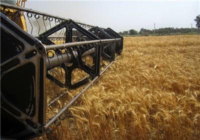 رئیس جهاد کشاورزی:برپایی کارگاه آموزشی جهادکشاورزی در بخش ارشق
