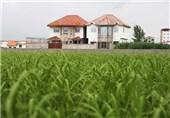 ساخت و ساز در حریم 60 متری سواحل مازندران متوقف شود
