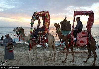 کشتی یونانی مهمان ناخوانده خلیج فارس
