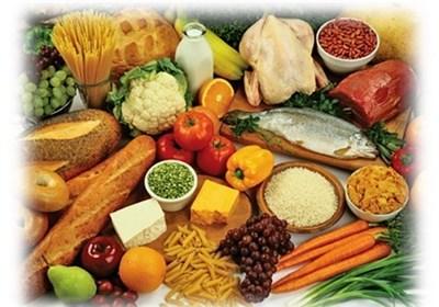 شرایط سرمایهگذاری در بخش کشاورزی و صنایع غذایی ایران تشریح شد