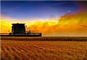 صدور کارت سوخت برای مالکان ماشین های کشاورزی 3 استان آغاز شد