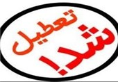 8واحد تهیه و توزیع مواد غذایی غیر بهداشتی در شیراز تعطیل شد