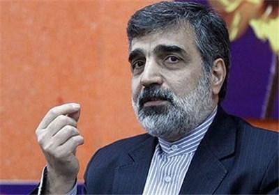 کمالوندی: مهلت دو ماهه ایران در برجام قابل تمدید نیست