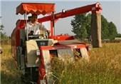 فهرست 40 کالای کشاورزی معاف از پرداخت ما به التفاوت نرخ ارز اعلام شد