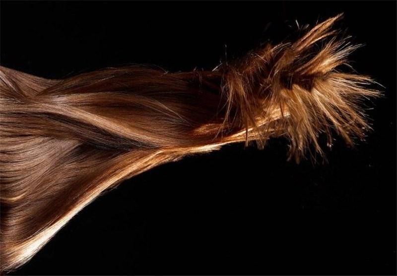 برس فلزی مو