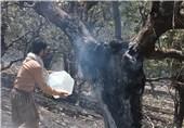 آتش سوزی ارتفاعات کبیرکوه آبدانان مهار شد