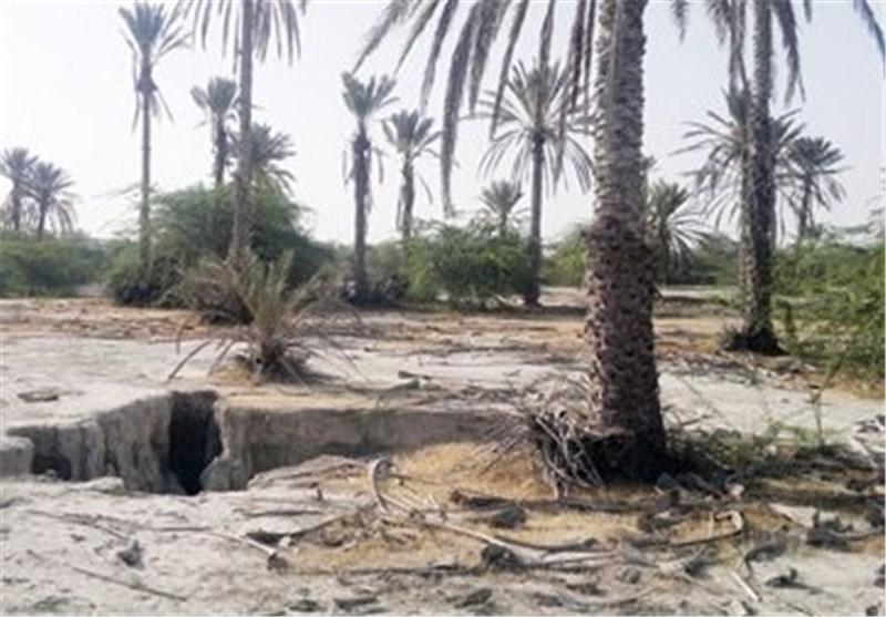سوء مدیریت منابع آب مهمترین عامل نابودی جلگه میناب در هرمزگان