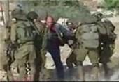 «درخت زیتون در سرزمین صلح»؛ روایت رنجهای مردم فلسطین در تلویزیون