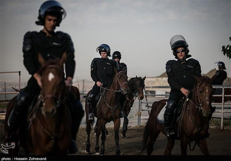 حضور «پلیس اسبسوار» برای تامین امنیت والیبال ایران و آمریکا