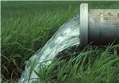 تعادل آبهای زیرزمینی و کشاورزی مورد توجه وزارت جهاد کشاورزی است