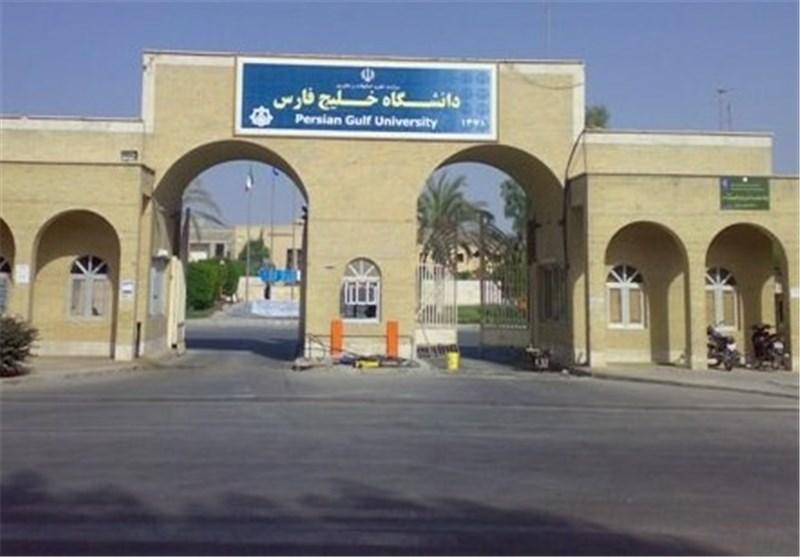 دانشگاه بوشهر