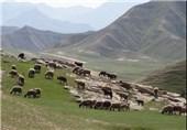 95 درصد سطح خراسان جنوبی را عرصههای منابع طبیعی تشکیل میدهد