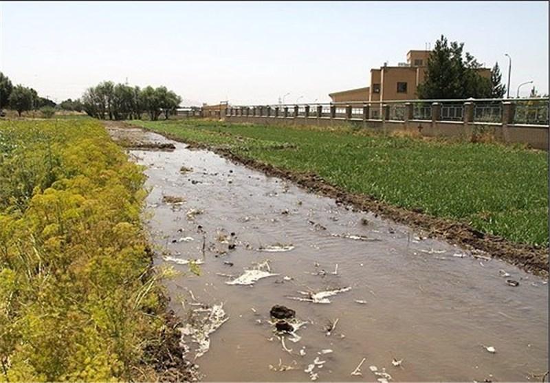 کاهش بارش در 24 استان کشور طی سال زراعی امسال