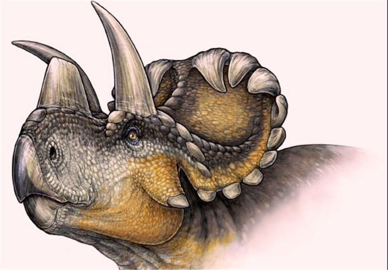 New Horned Dinosaur Found in Canada