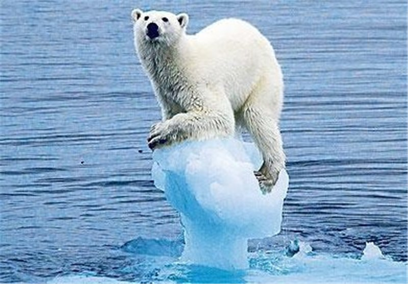Sea Level to Rise 20 Feet, Climate Scientists Warn