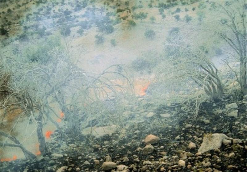 آتش سوزی جنگل لرستان9