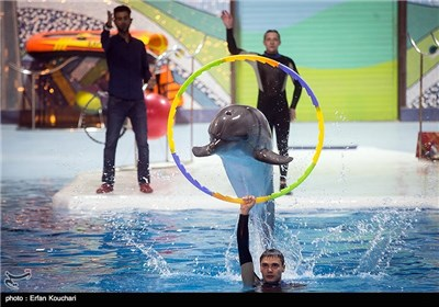 Tehran Milad Tower Dolphinarium