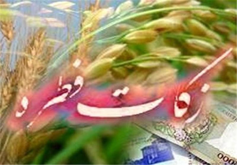 احکام ماه رمضان |فطریه بر چه کسانی واجب است؟ / زمان پرداخت زکات فطره