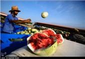 """ماجرای رشد هندوانهها با استفاده از """"پودر بهداشتی"""""""