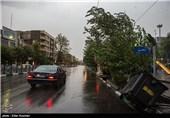 چرا سازمان هواشناسی طوفان دیشب تهران را پیشبینی نکرده بود؟