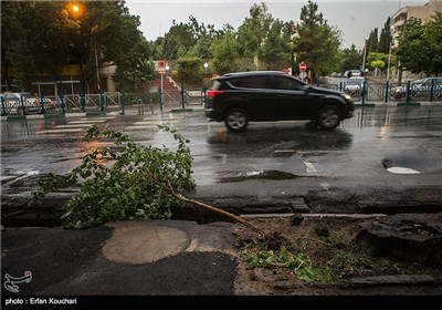 Tehran Gets Hit with Summer Storm