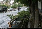 """هشدار وقوع تندباد در تهران/ پیش بینی طوفان های """"بعدازظهری"""" تا آخر هفته"""