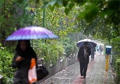 بارش باران در استان بوشهر از آذرماه آغاز میشود