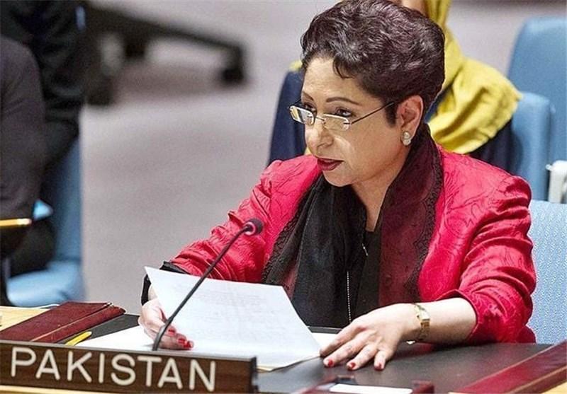 پاکستان کی سلامتی کونسل میں کشمیر و فلسطین کے مسائل حل کرنے پر بدستور تاکید