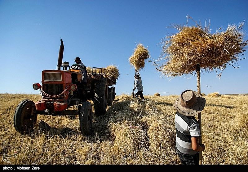 http://newsmedia.tasnimnews.com/Tasnim//Uploaded/Image/1394/05/04/139405041200373065756564.jpg
