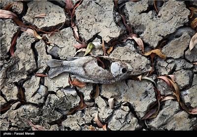 خشکسالی رودخانه رازآور