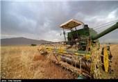 اردبیل| تلفیق تجربیات کشاورزان با علم روز بهرهوری واقعی را به دنبال دارد