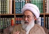 آیتالله شبستری: دولت سعودی به فکر امنیت حجاج نیست و بیکفایتی آنها برای همه مسلم است