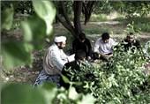 مدرسه شبانهروزی حفظ قرآن برای آبادانیها افتتاح شد + فیلم
