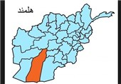 حکومت وحدت ملی ضعیف است/ دولت با طالبان صلح کند