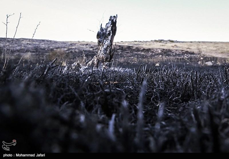 قزوین| 5 هکتار از مراتع شهرستان بوئین زهرا در آتش سوخت