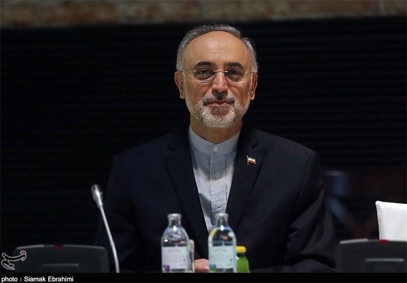 صالحی یعلن اکمال التوقیعات علی وثیقة أعادة تصمیم مفاعل اراک
